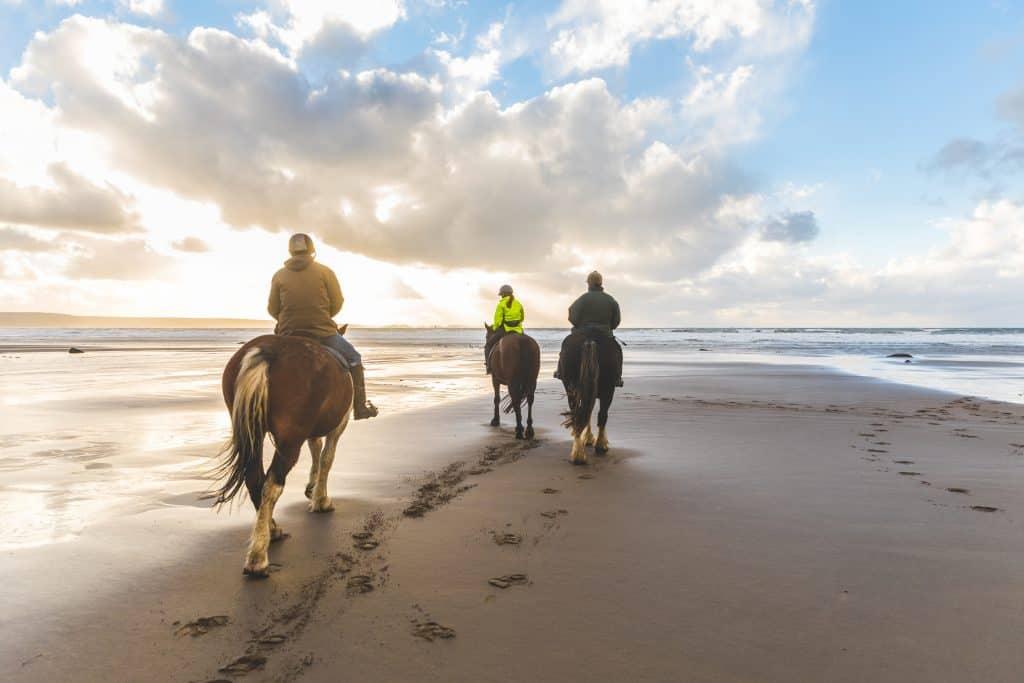 Riders take their horses along the beaches of Bradenton.