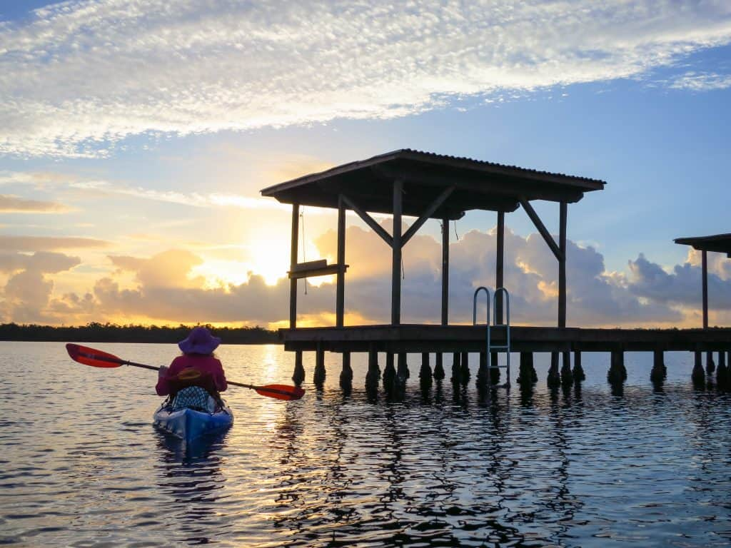 A kayaker paddles on the Wilderness Waterway, one of the best ways to spend a day trip from Naples.