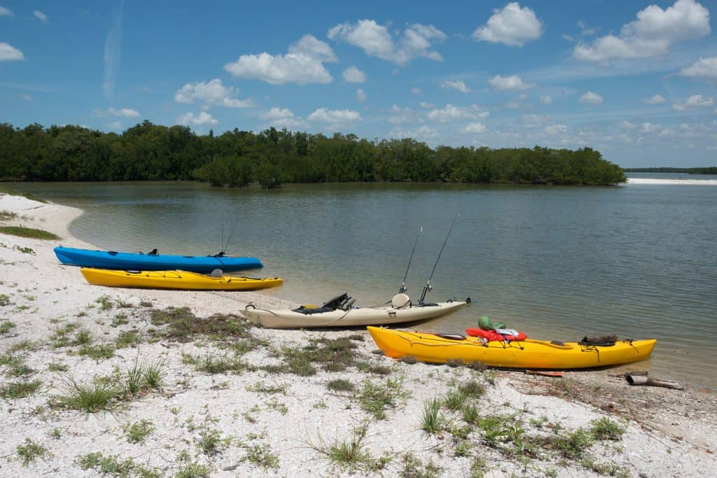 Kayaks are lined up on the edge of the water on the Ten Thousand Islands.