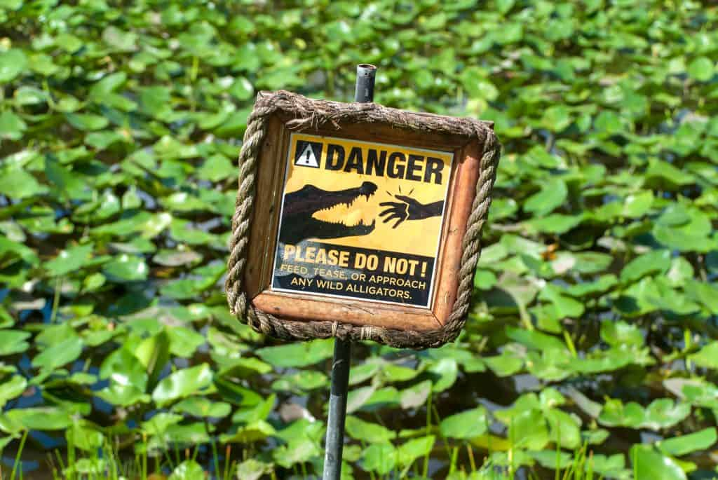 A sign warns guests not to approach alligators on Alligator Alley in Florida.
