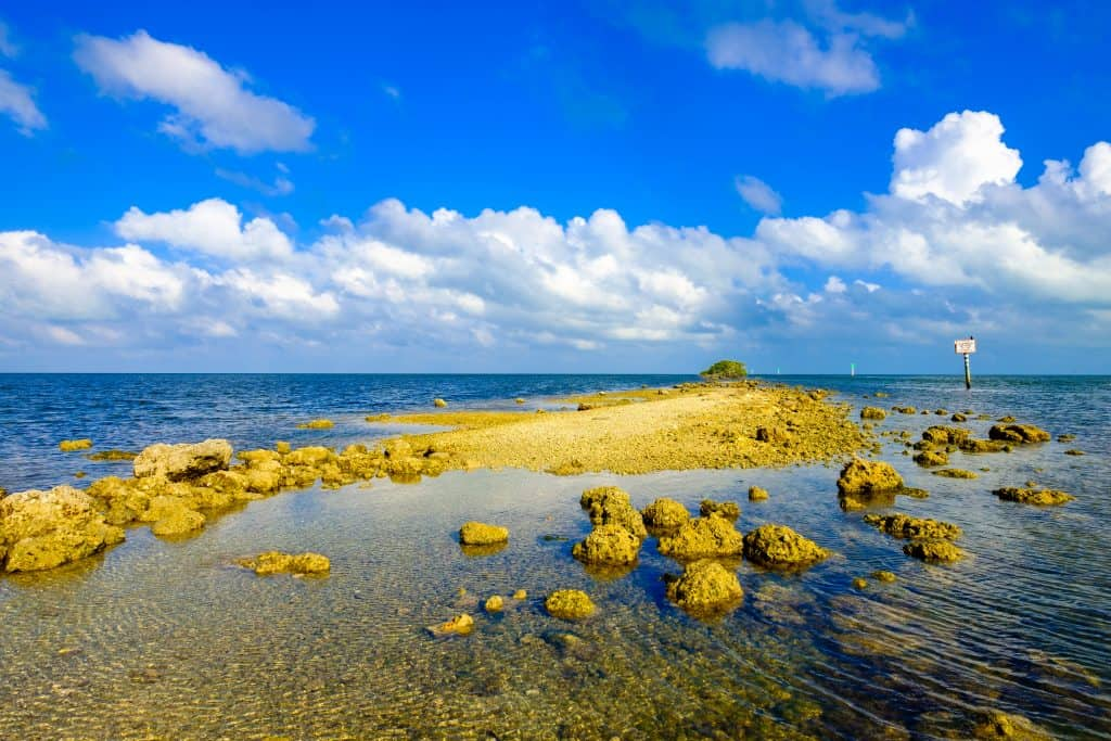 A rocky formation at Biscayne Bay.