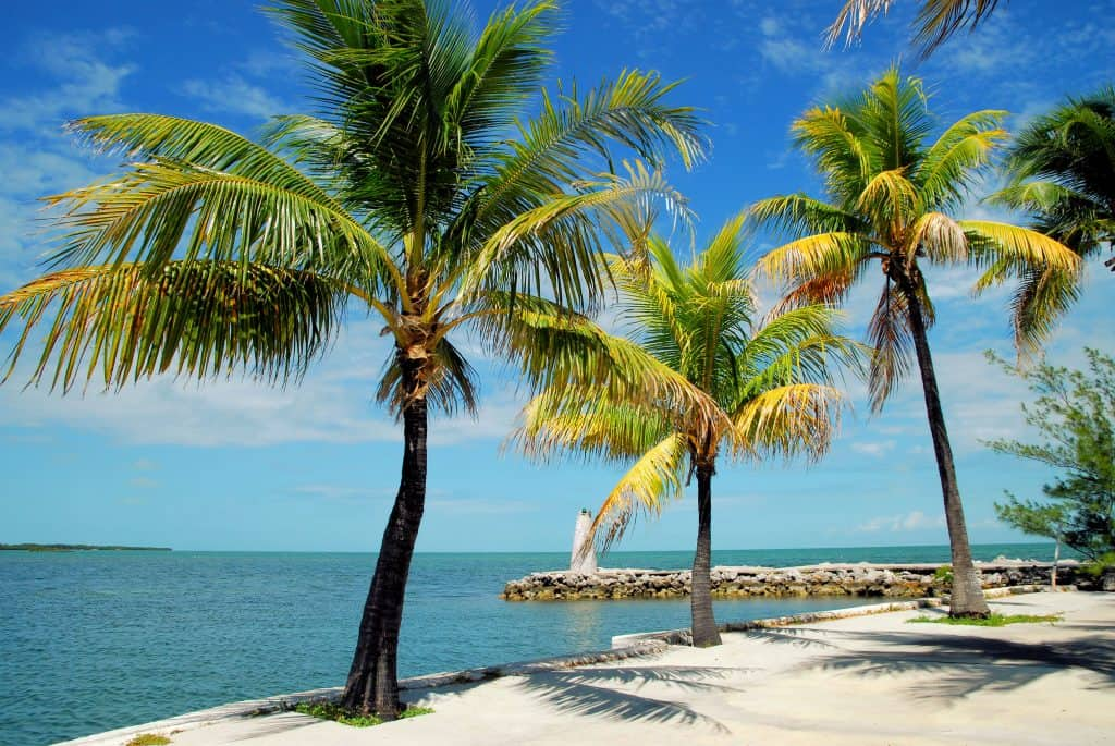The beaches and palm trees of Marathon Key, one of the prettiest of the Florida Keys.