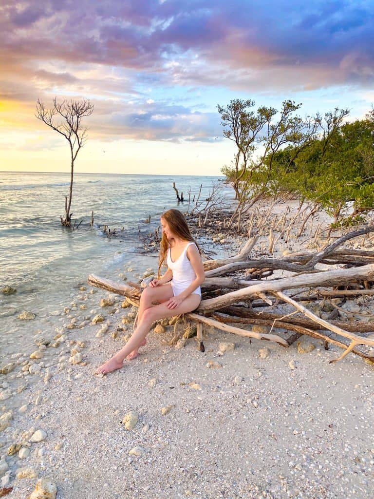 Honeymoon island in Tampa where a girl in white bathing suit is posing on mangrove tree roots as the sun sets