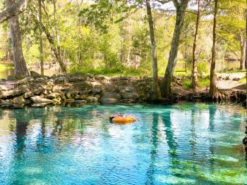 tubing in florida at ginnie springs will give you one of the longest tube runs that florida has to offer
