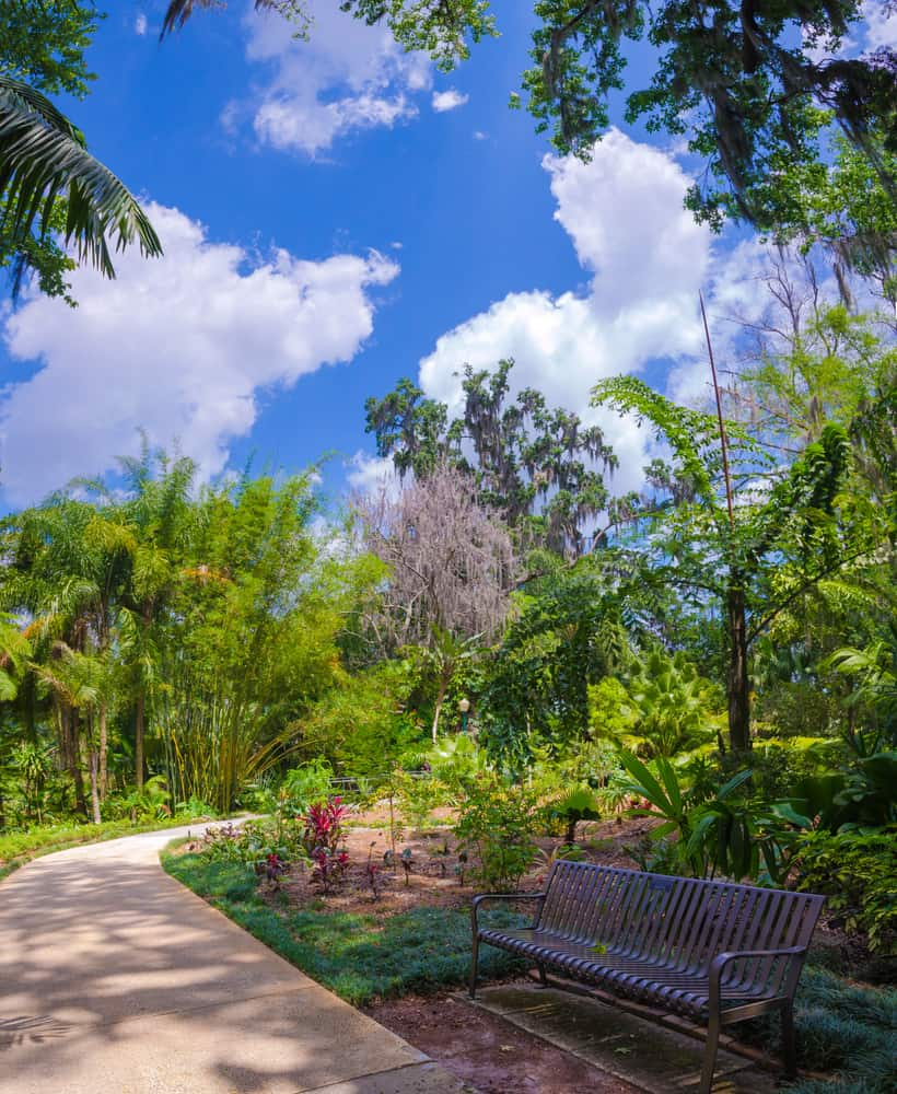 A walkway and bench at Harry P. Leu Gardens in Orlando.