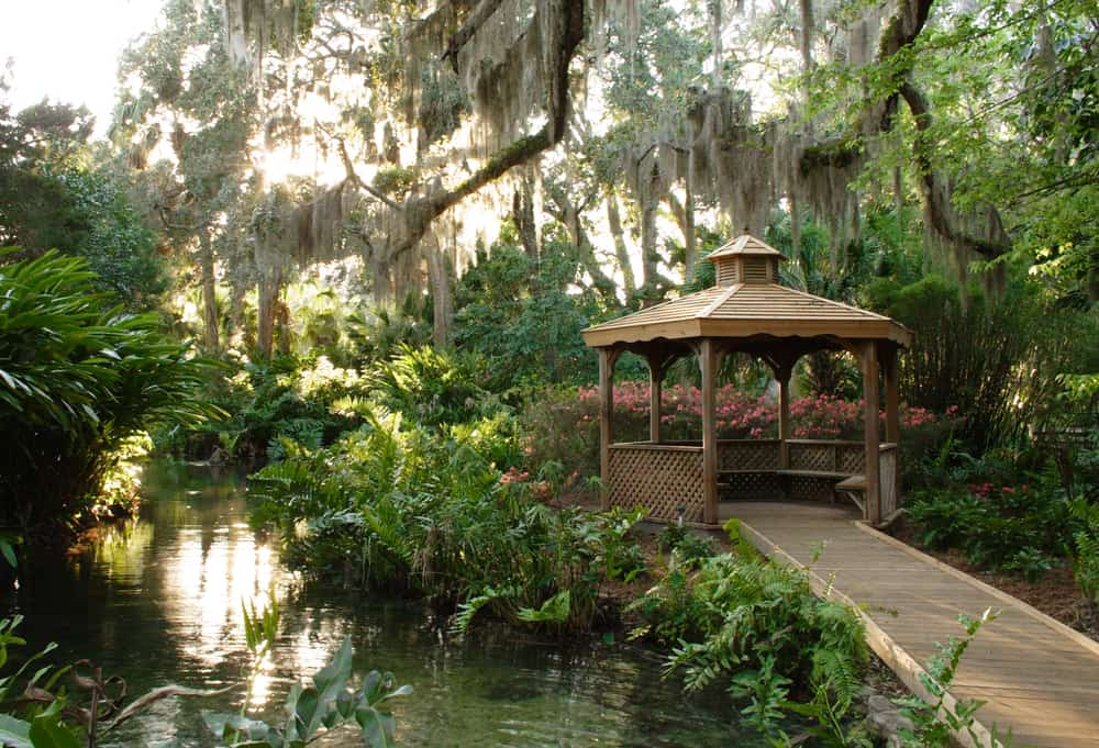 One of the most beautiful day trips from Jacksonville, Washington Oak Gardens State Park