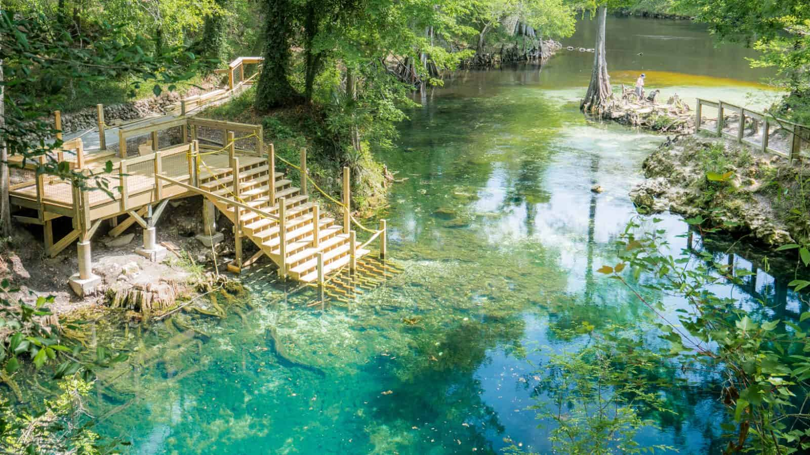 woman standing at Madison Blue Springs in north florida surrounded by green trees