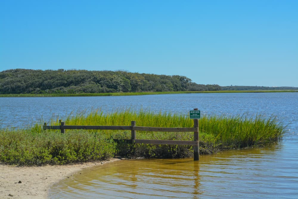GTM Research Reserve is the best beach in saint augustine for you if you're a fan of hiking
