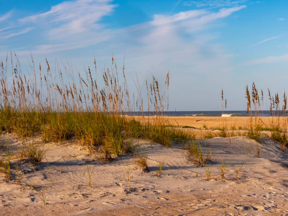 Anastasia State Park has just about everything a beachgoer could want; swimming, sunbathing, surfing, fishing, sailboats, paddle-boarding...