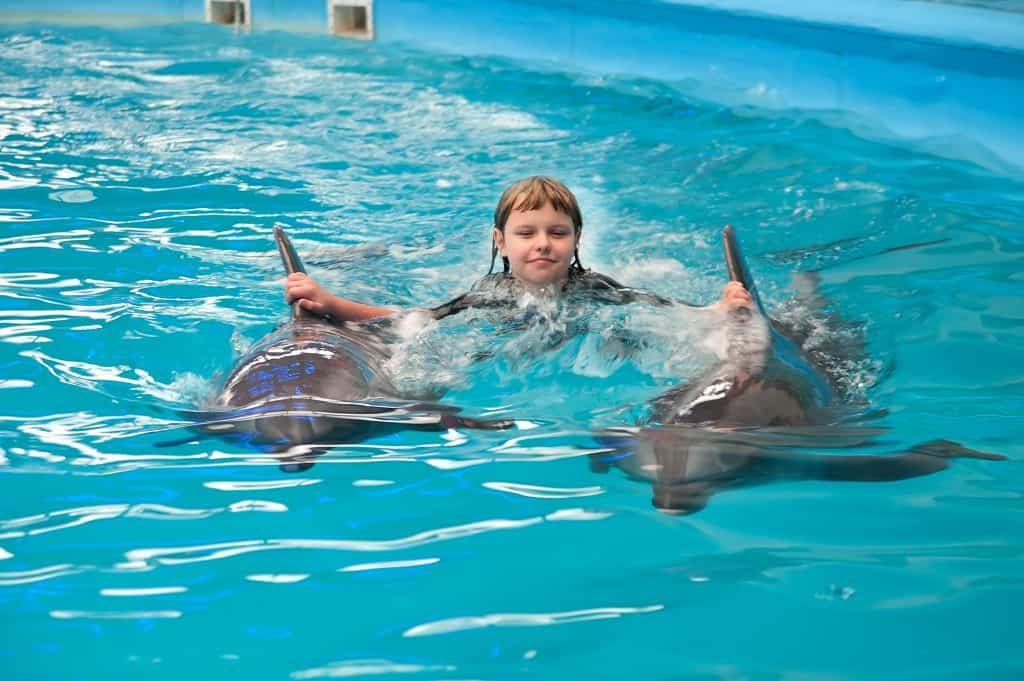 Dolphins swim in a therapy session with a child with autism.