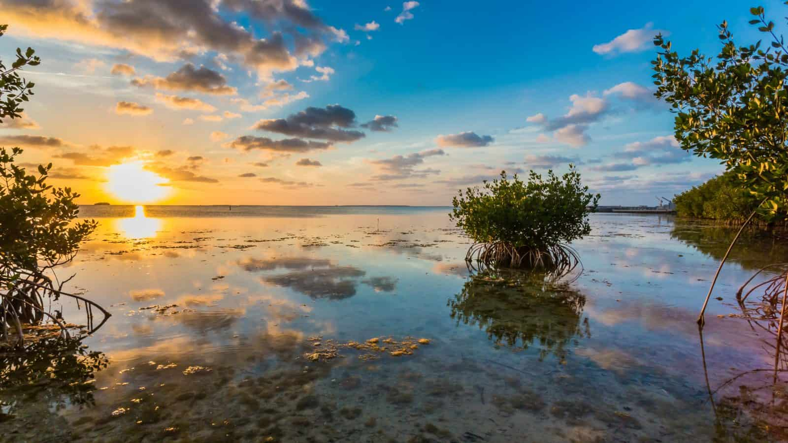 The sun and clouds are reflected in the waters of Key Largo at sunset.