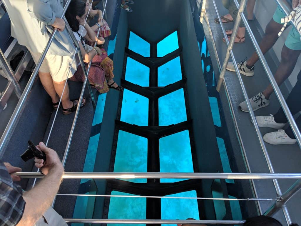 A crowd peered through the glass bottom boat, one of the best things. todo in Key Largo.