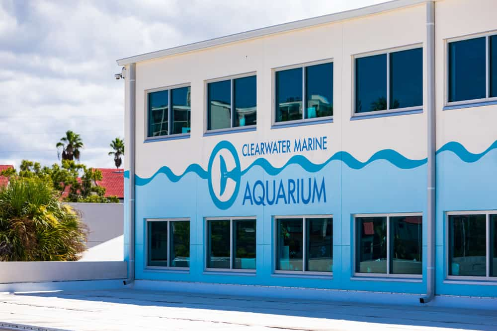 External view of the rescue center of the Clearwater Marine Aquarium.