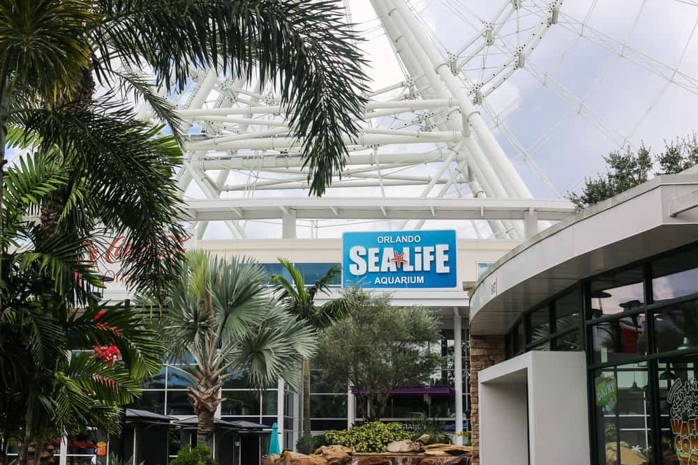 Outside view of the Sea Life Orlando Aquarium with palm trees standing in front.