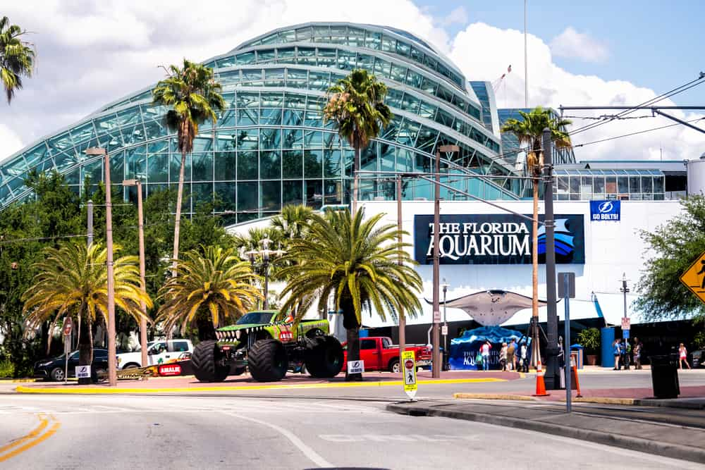 External view of the Florida Aquarium building with palm trees in front, one of the best aquariums in Florida