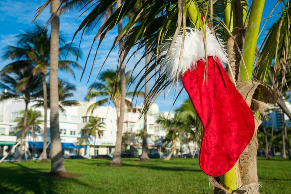 A Christmas stocking hanging ona aplan tree in an article about Christmas in Miami