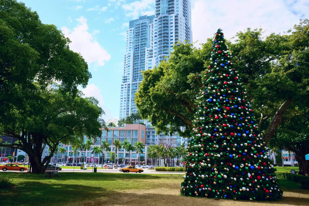 Christmas Tree in Bay Side Miami