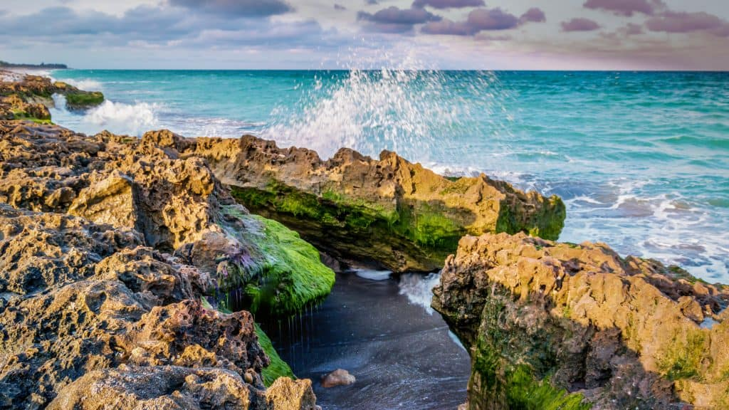 The waves crash up against the limestone formations of Blowing Rocks, one of the best things to do in Jupiter
