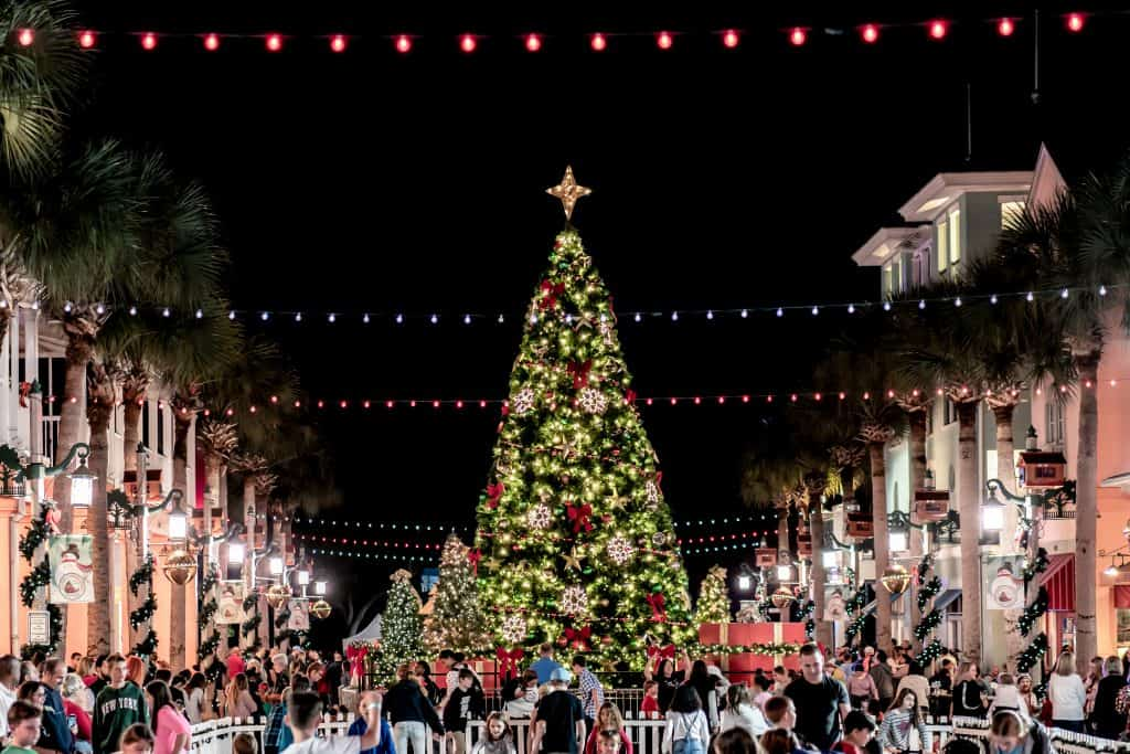 A large Christmas tree in a square of one of the best Christmas towns in Florida