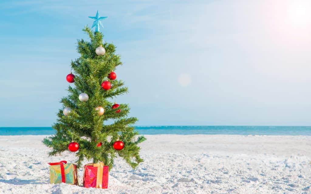 A mini Christmas tree on a sandy beach