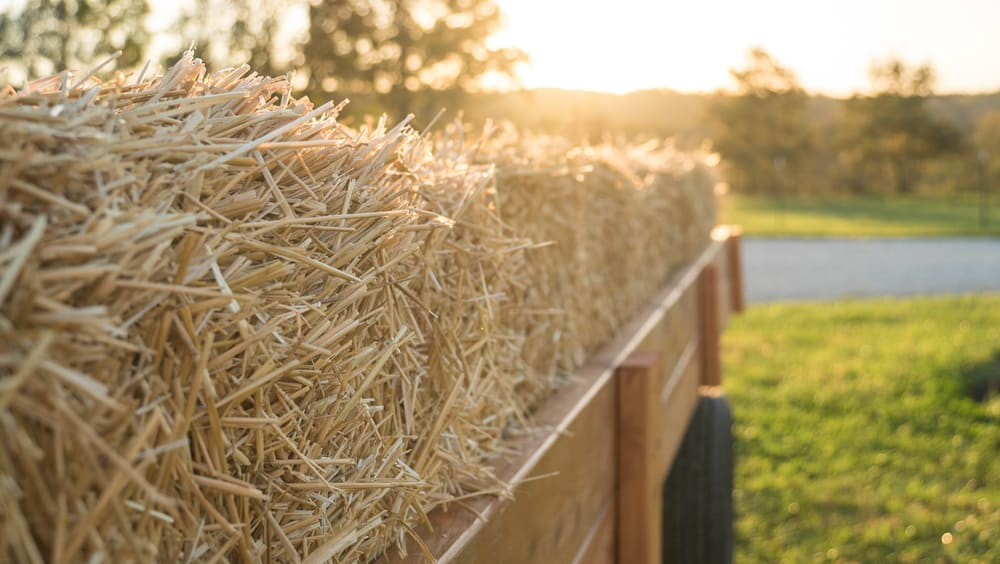 Sunshine on bales of hay loaded on a wagon ready for a hayride.
