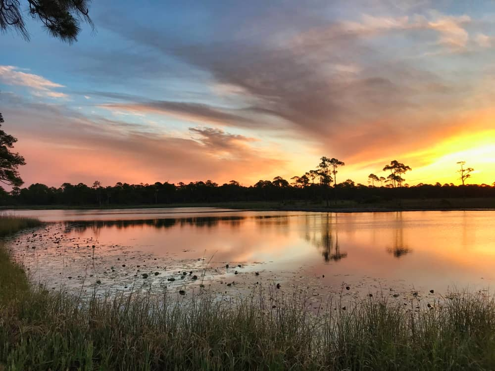 Sunrise over the calm waters of Western Lake in Grayton Beach State Park.