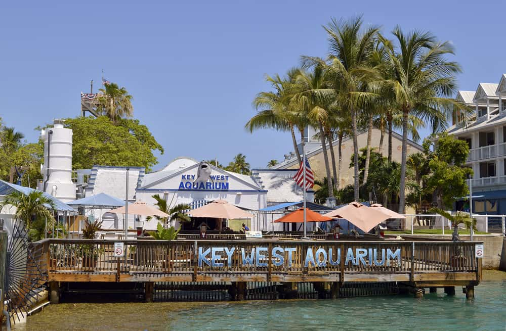 The Key West Aquarium looks like maritime history with a shark welcoming you inside, a dock, and blue letterings for advertisements.