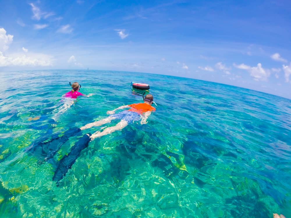 Two people snorkel in blue waters with a blue sky above them.