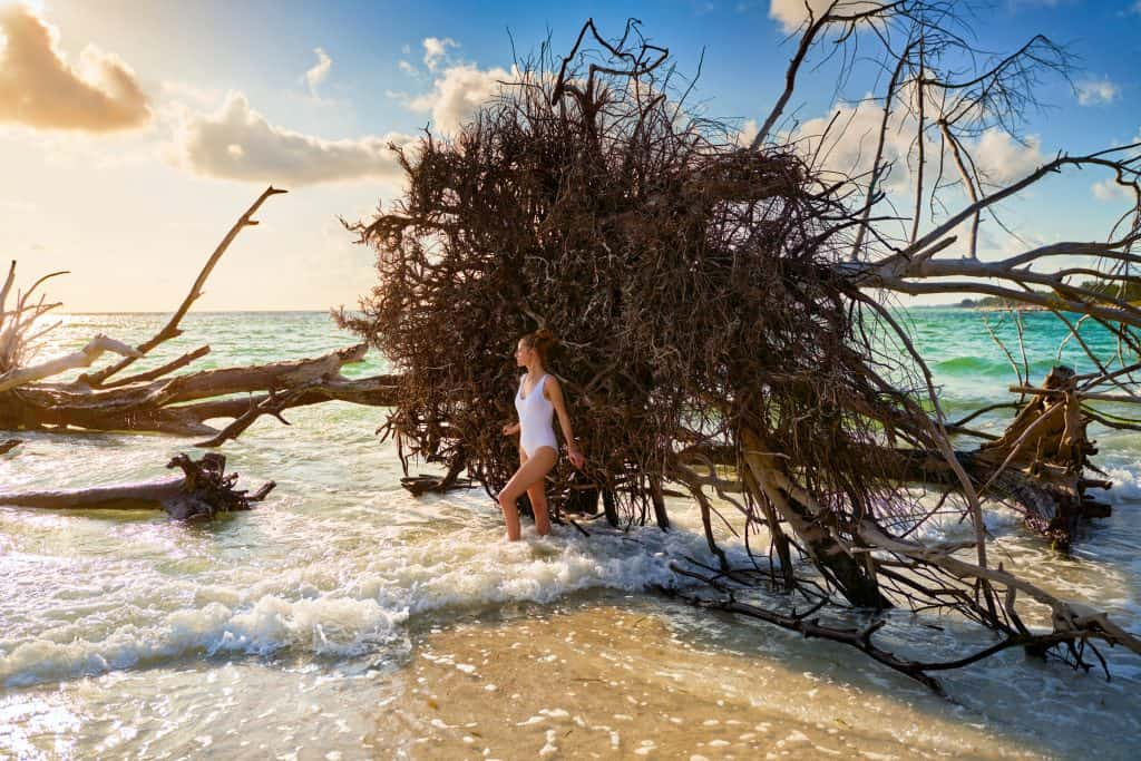 Standing in front of driftwood on Beer Can Island.
