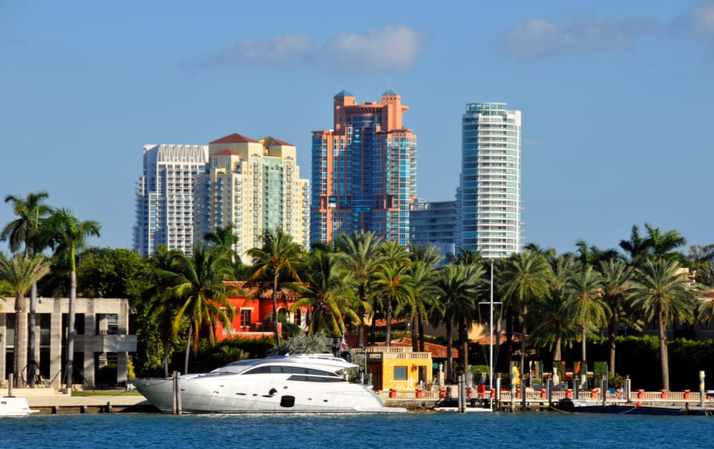 boat on the water in front of palms trees and buildings in Miami Florida