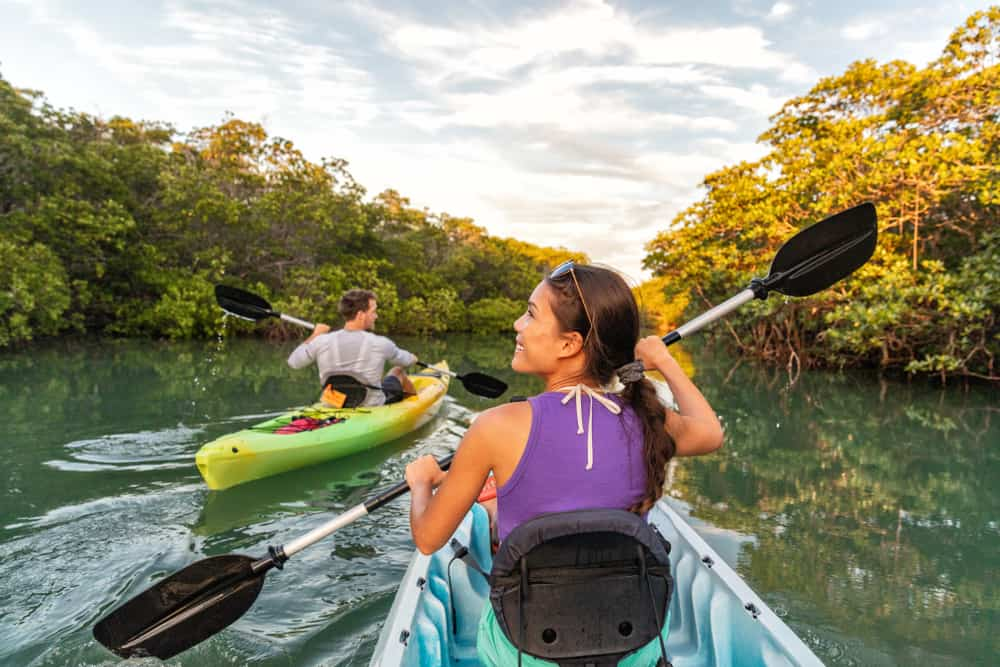 A couple kayaking in the mangroves. There is a man and woman in two different kayaks looking around them as they kayak on a sunny day. Its one of the best things to do in Anna Maria Island.