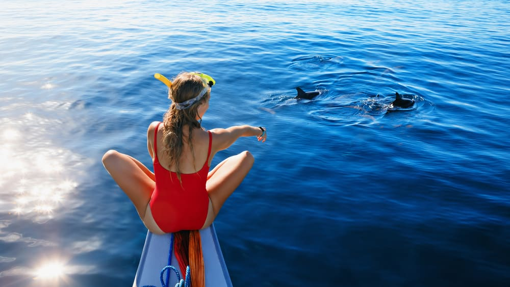 A woman in a red bathing suit sitting on the edge of a boat looking down into the ocean. She is pointing to two dolphin that are swimming by.